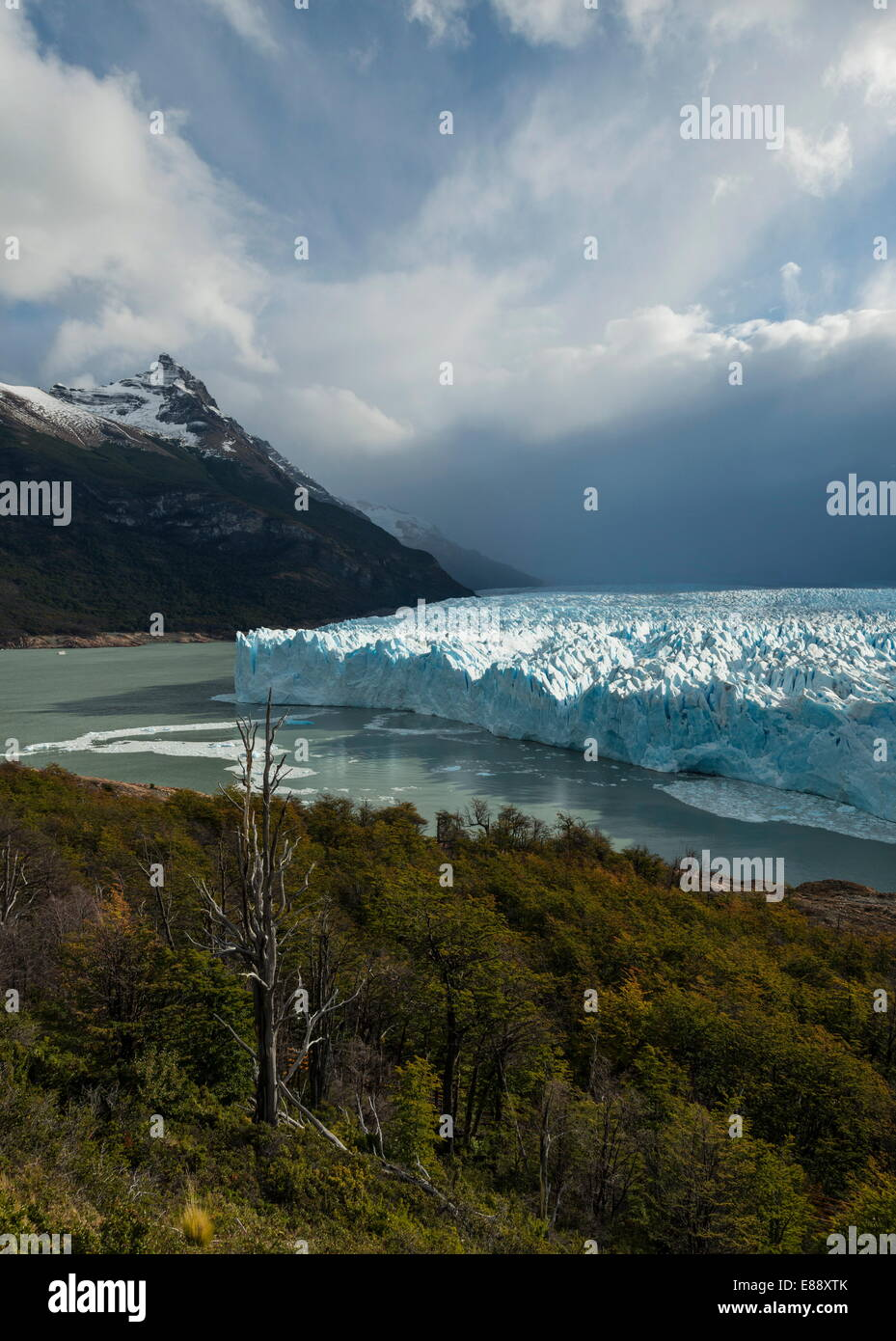 La lumière de l'après-midi sur le glacier Perito Moreno, le Parc National Los Glaciares, Site de l'UNESCO, Photo Stock