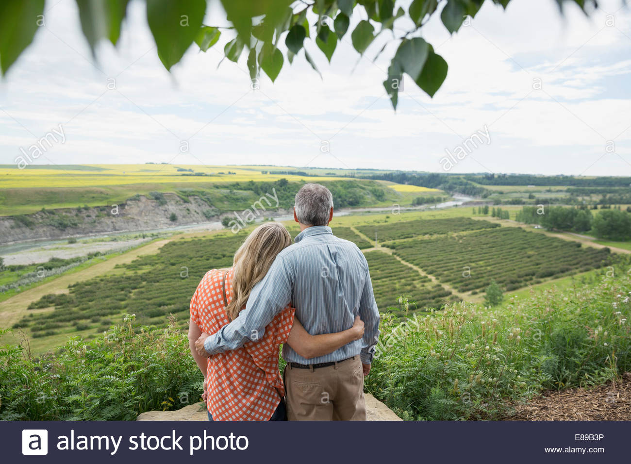 Hugging couple looking at view de campagne Photo Stock