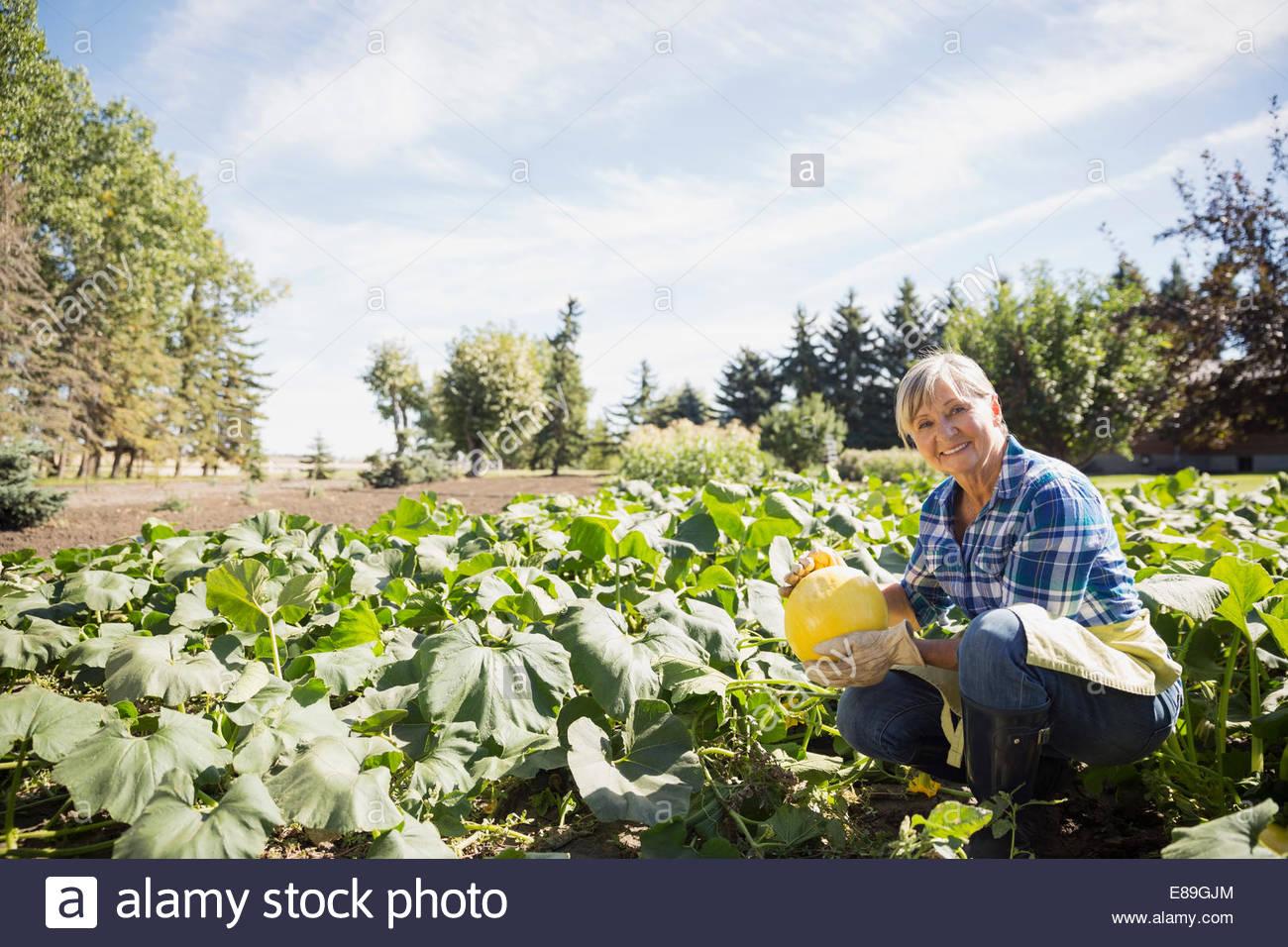Portrait of woman harvesting squash in vegetable garden Photo Stock