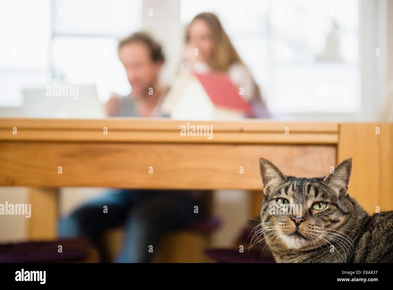 montrer mature chatte amateur porno documentaire