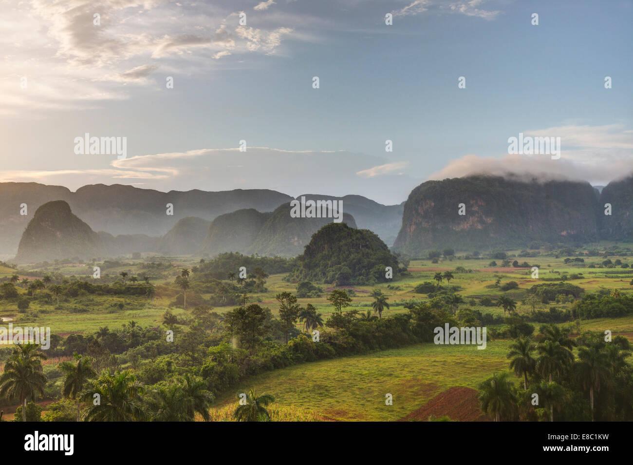 Dans la soirée des mogotes de Viñales paysage, province de Pinar del Rio, Cuba Photo Stock