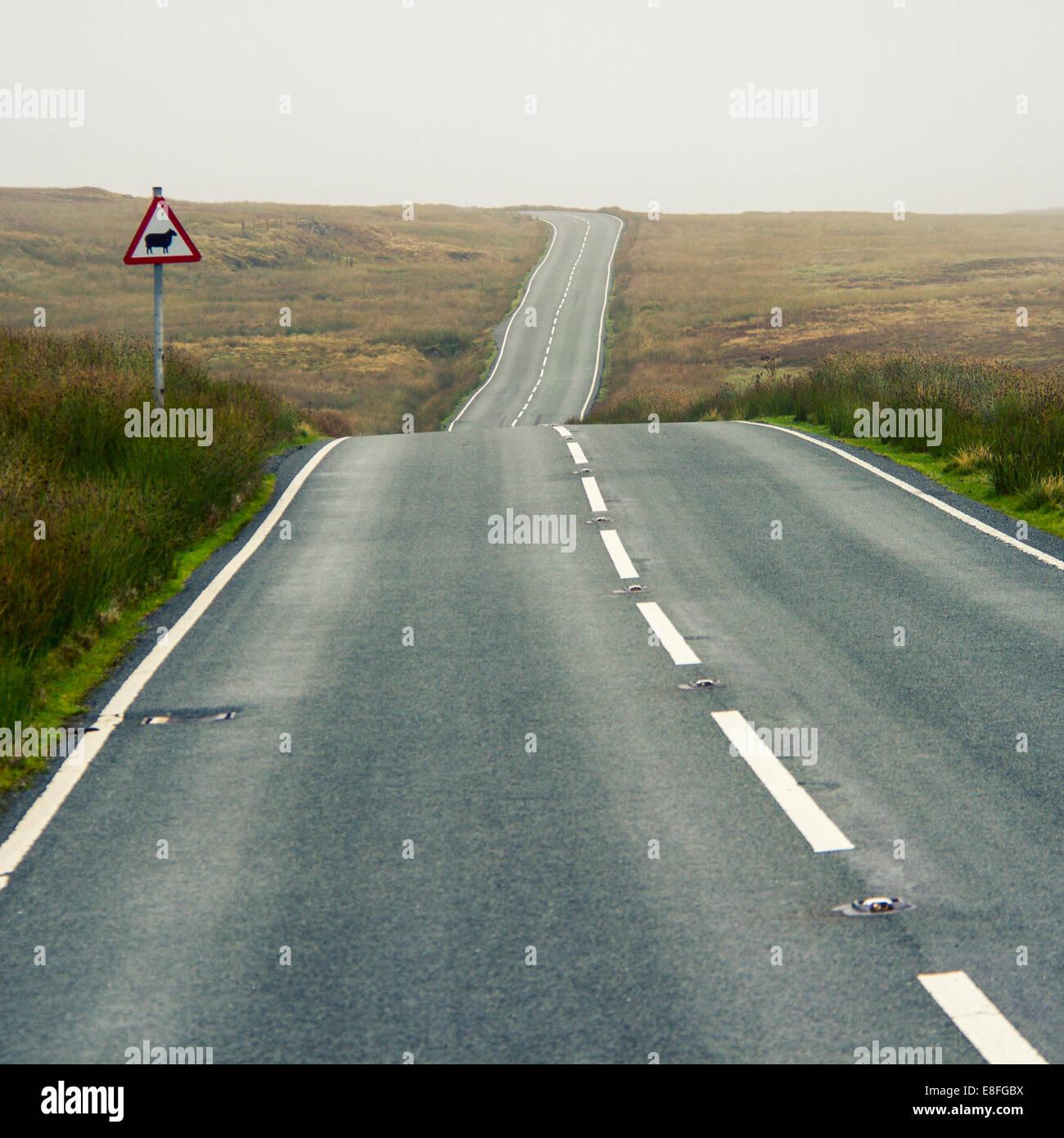 Route droite et un mouton animal crossing sign Photo Stock