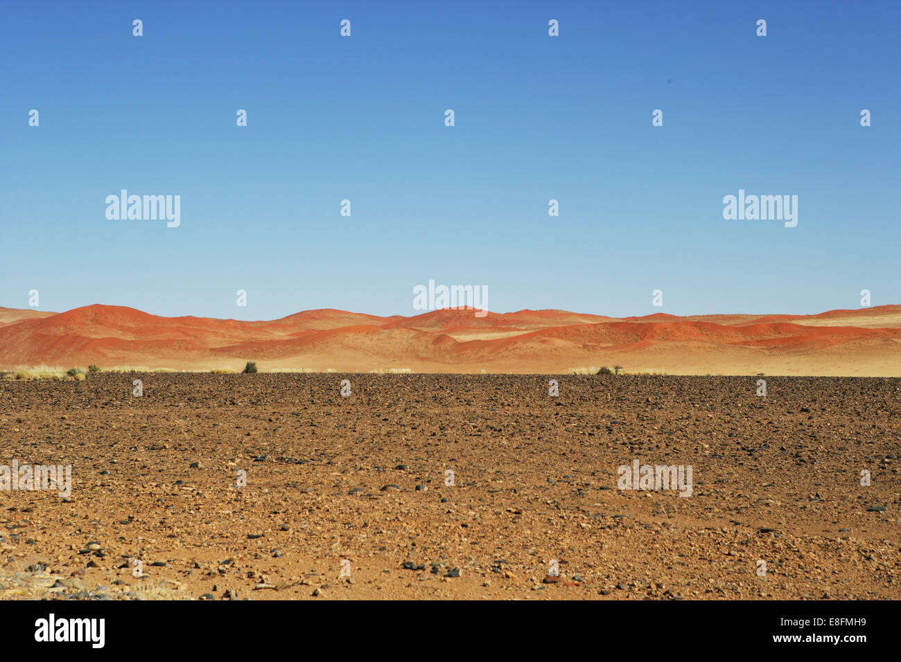 Paysage de dunes de sable, Naukluft National Park, Sossulsvlei, Namibie Photo Stock