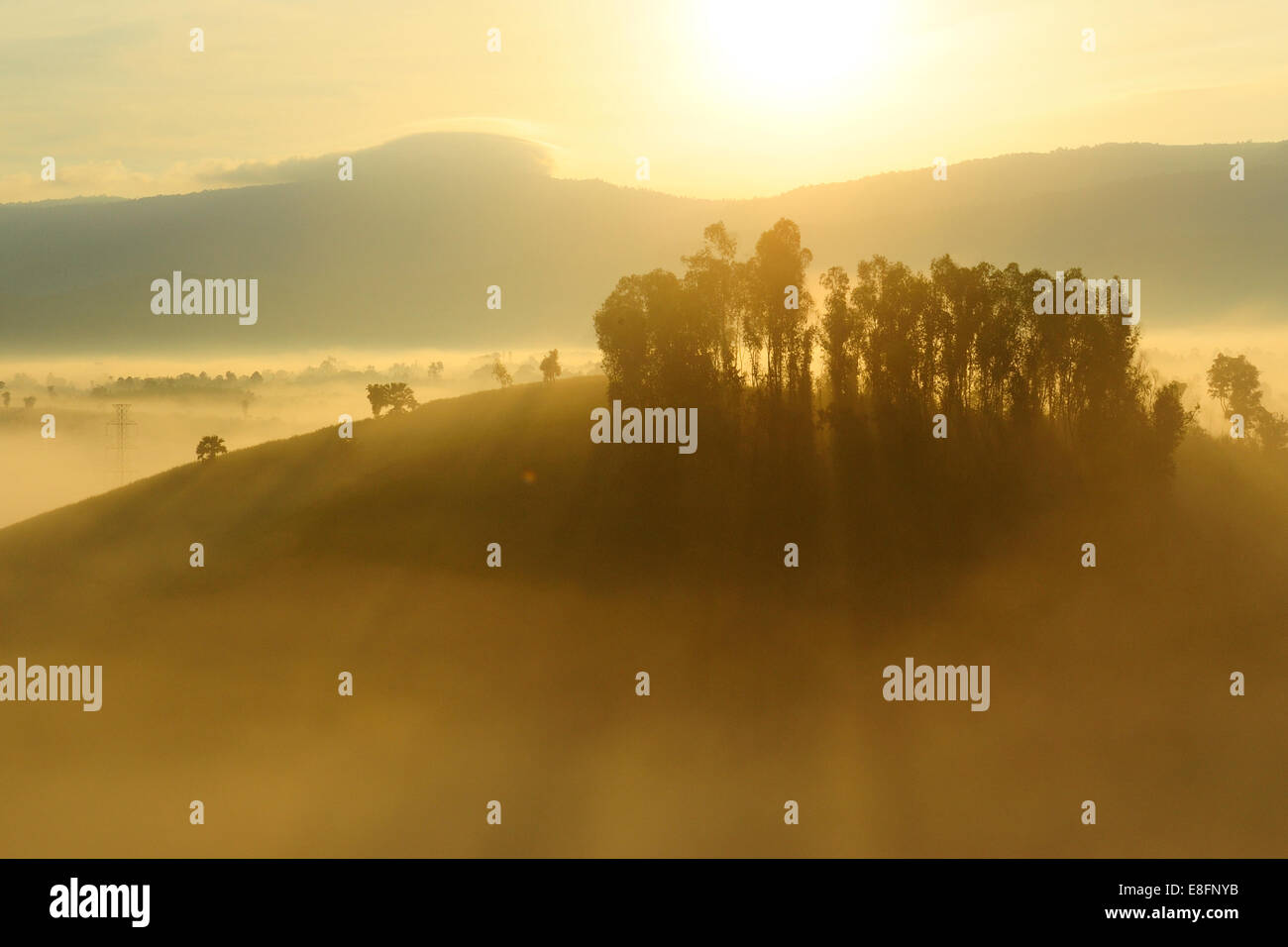La Thaïlande, la province de Chiang Mai, Chiang Mai, la lumière du soleil à travers le brouillard Banque D'Images