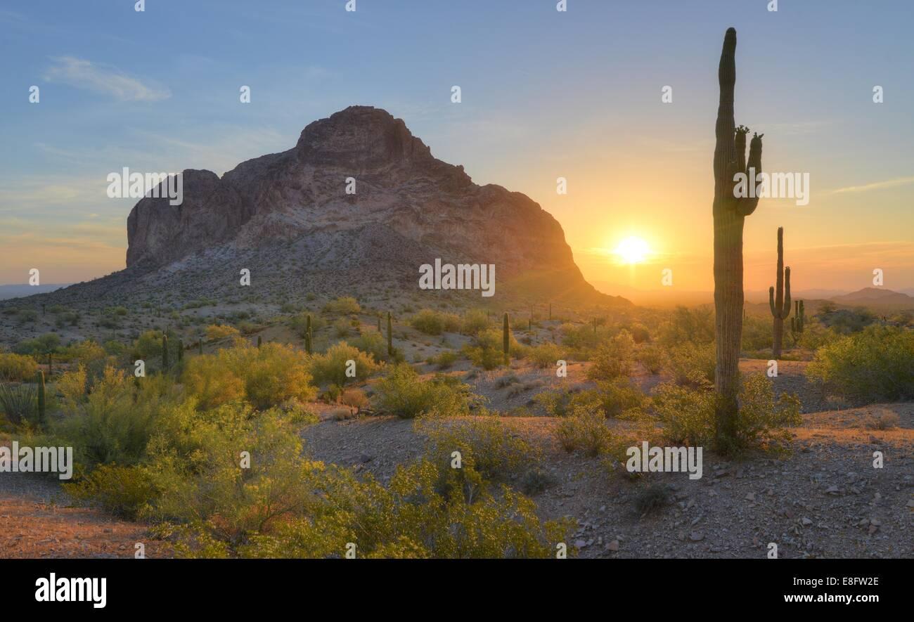 USA, Arizona, désert, montagnes Eagletail Printemps Lever du Soleil dans le désert Photo Stock