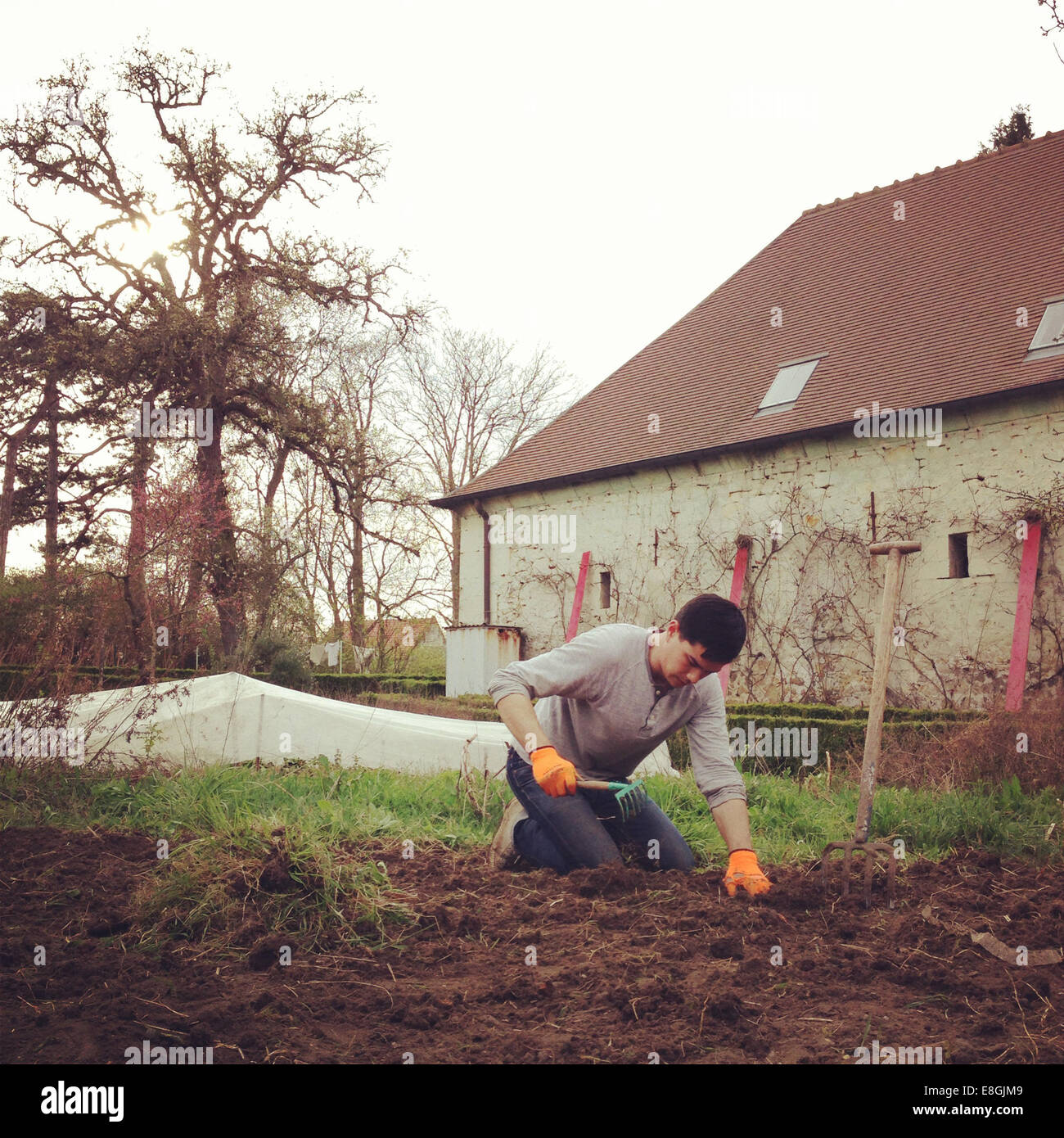 Homme de jardinage Photo Stock