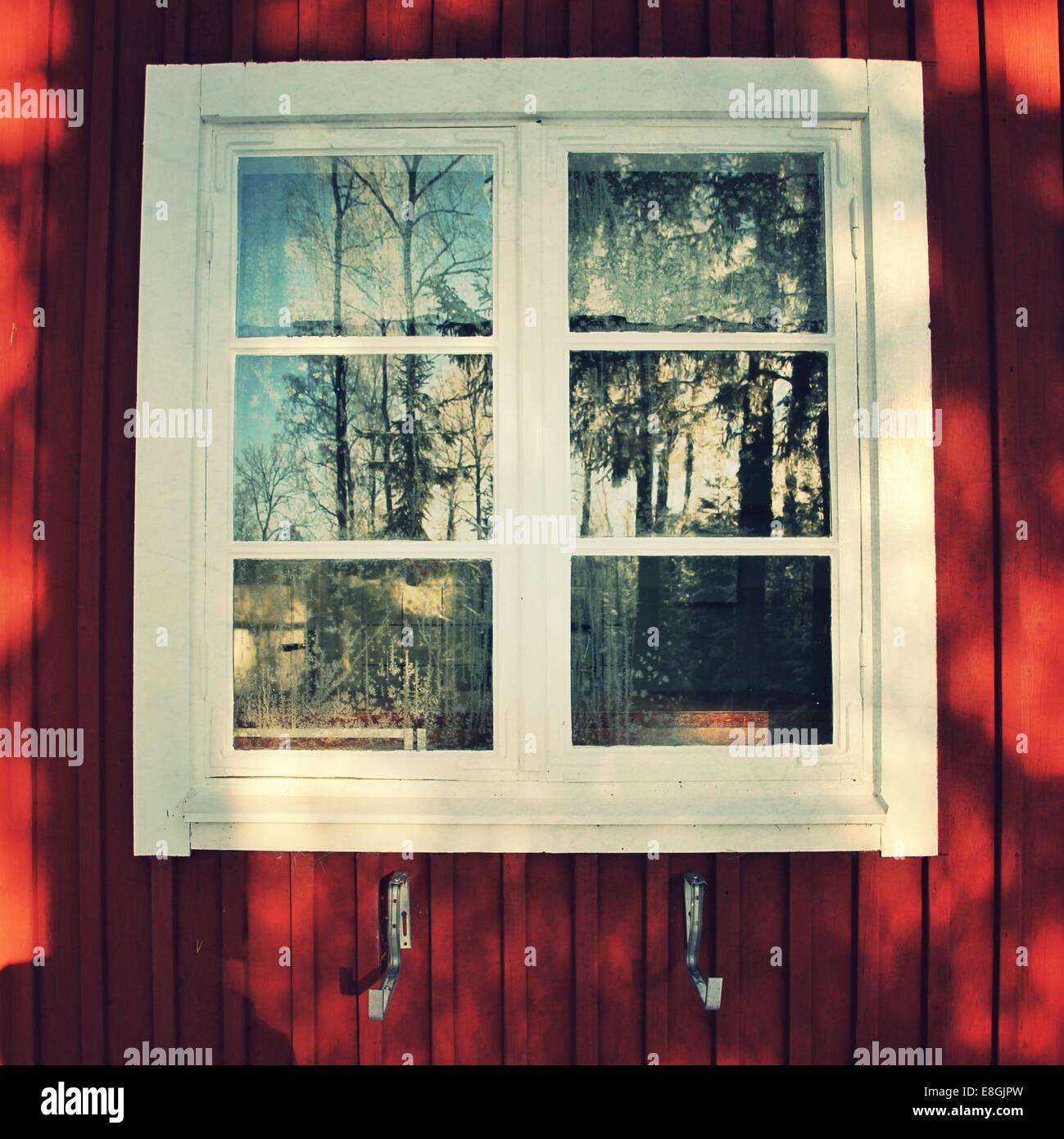 Fenêtre avec réflexion arbre Photo Stock