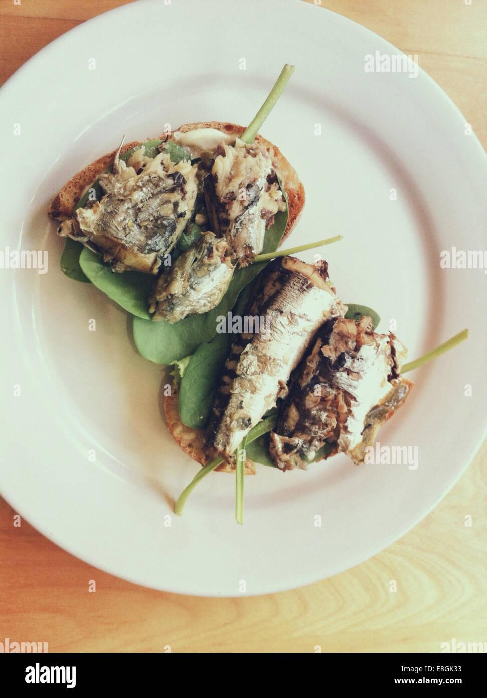 Sardines sur toast avec épinards frais verts Photo Stock