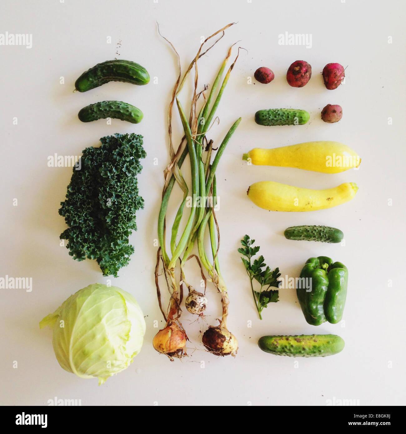 Studio shot de légumes fraîchement cueillis Photo Stock