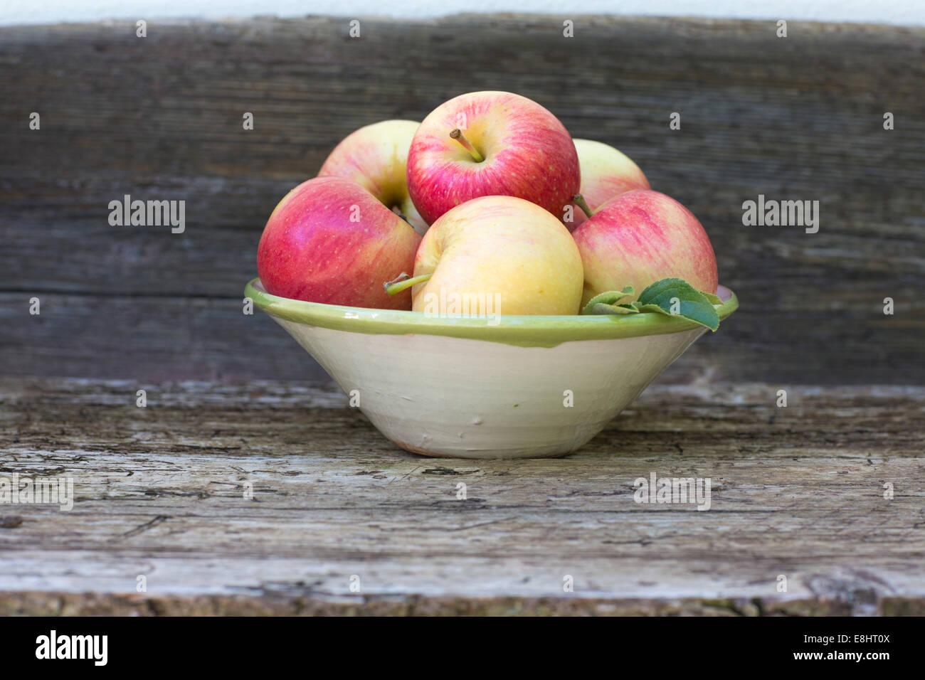 Les pommes, rouge, vert, fruits, automne, banc rustique, fond blanc, à l'extérieur, dans un bol en Photo Stock