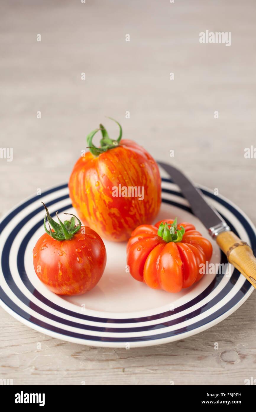 Costoluto Fiorentino, l'enfourneur à rayures rouges et tomates zébrées sur la plaque Photo Stock