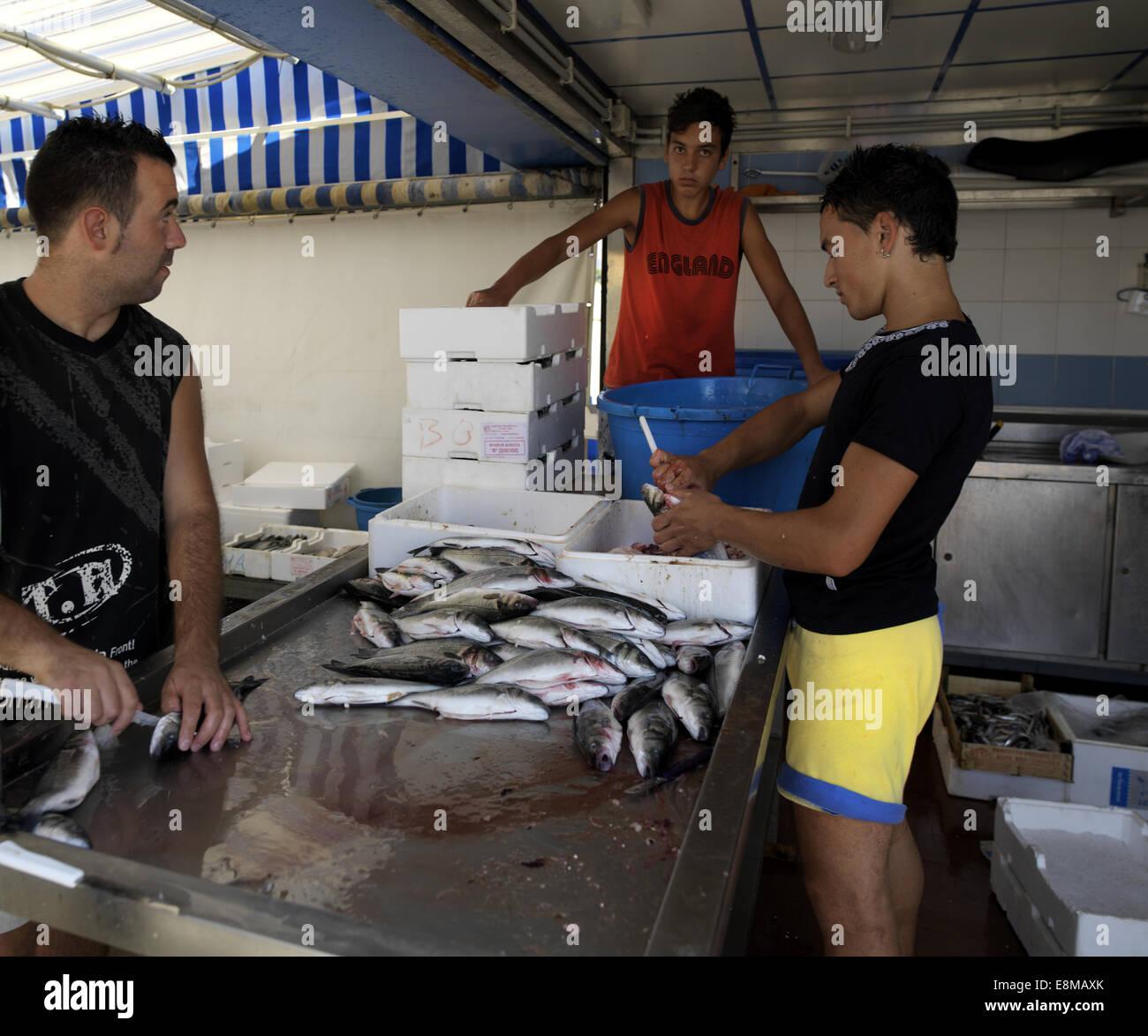 Sicile Italie Marché de poisson à poisson éviscération adolescent Porticello Banque D'Images