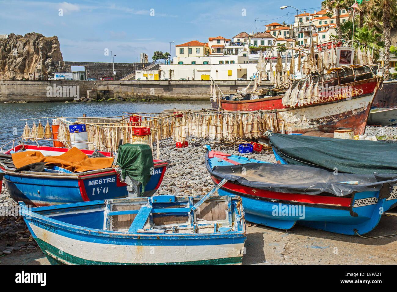 Port de Camara de Lobos Madère Portugal Photo Stock