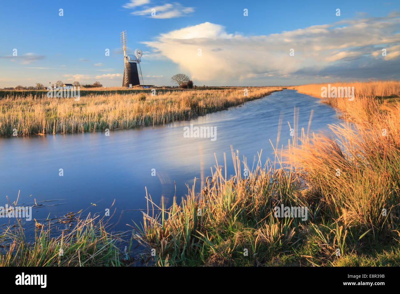 Le Drainage du mouton Moulin dans le Broads National Park Photo Stock