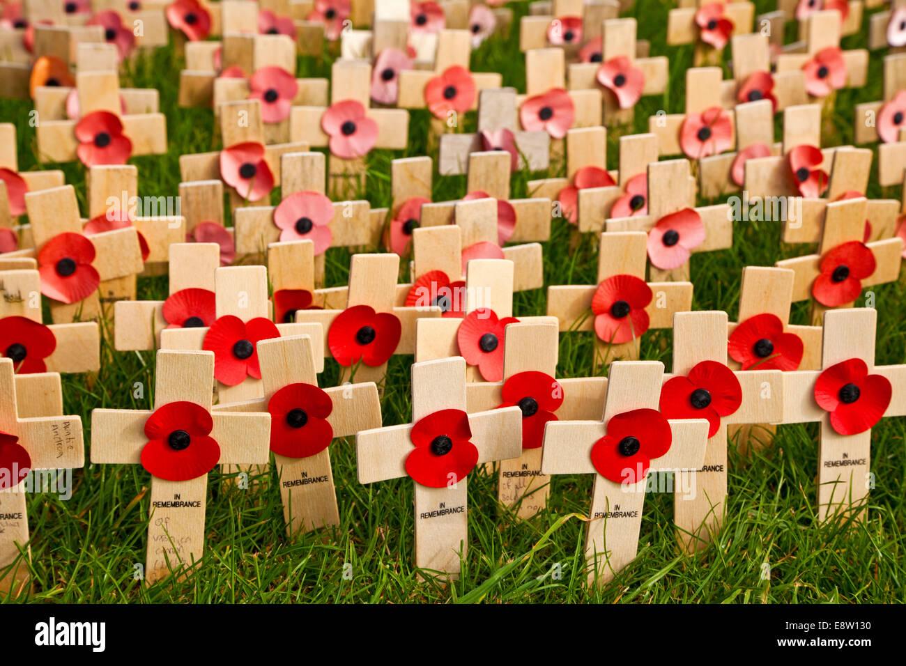 Croix du Souvenir et coquelicots sur Lindisfarne war memorial britannique Northumberland Banque D'Images