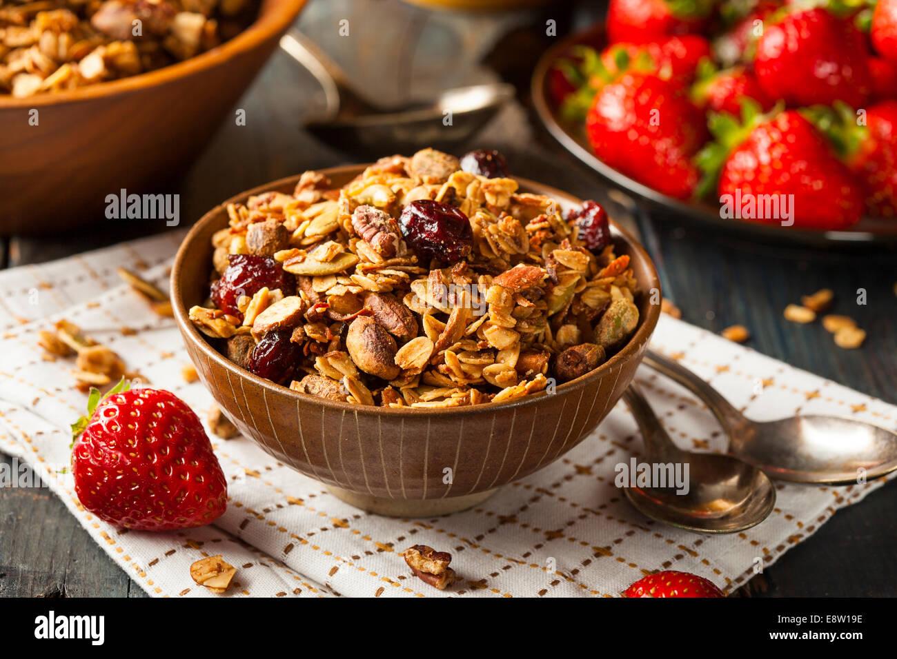 Granola Maison saine avec les écrous et les canneberges séchées Photo Stock