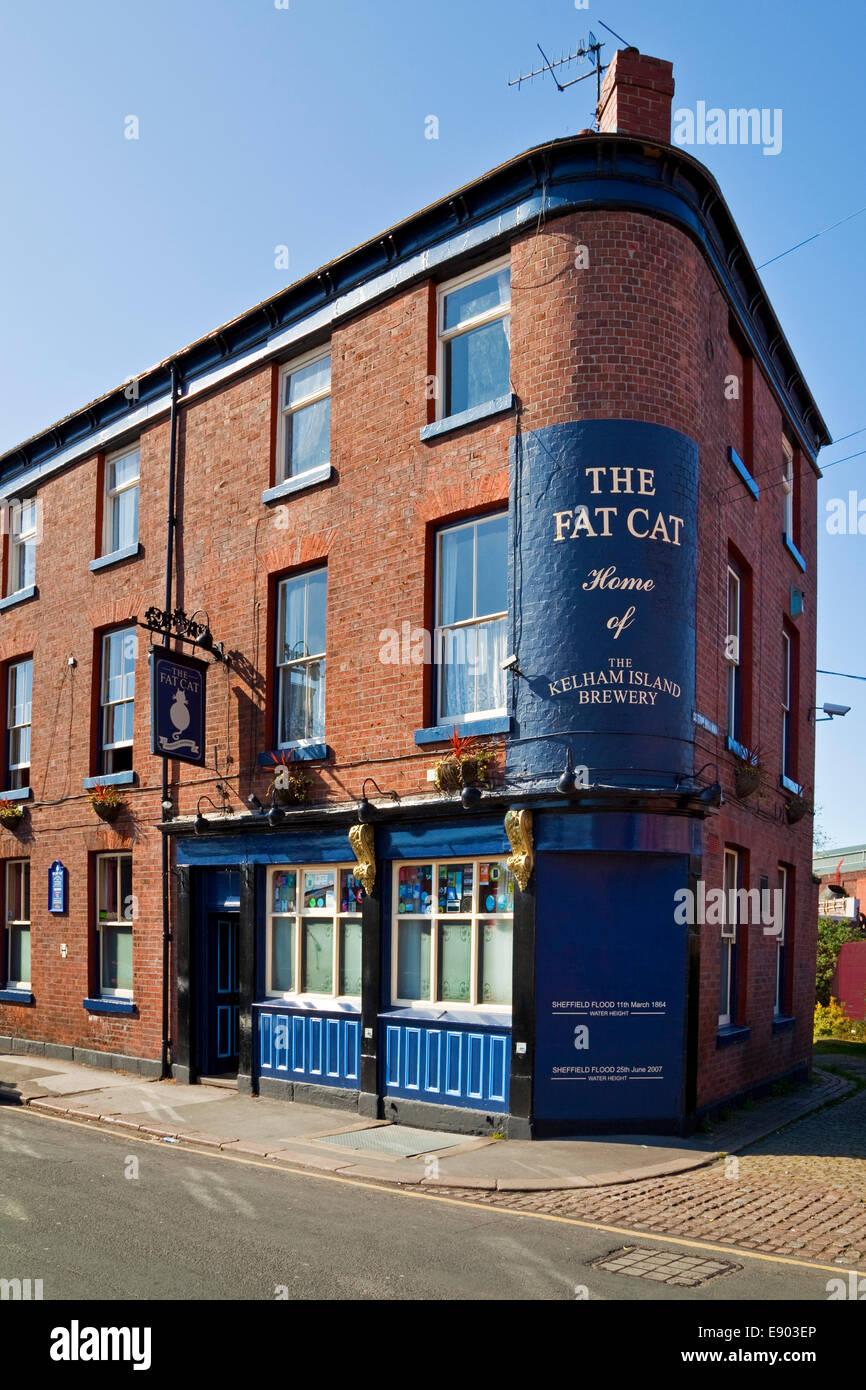 Le gros chat public house Sheffield South Yorkshire, UK Banque D'Images