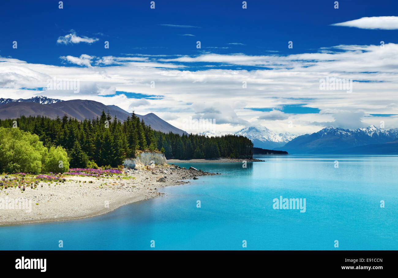 Le lac Pukaki et Alpes du Sud, Nouvelle-Zélande Photo Stock