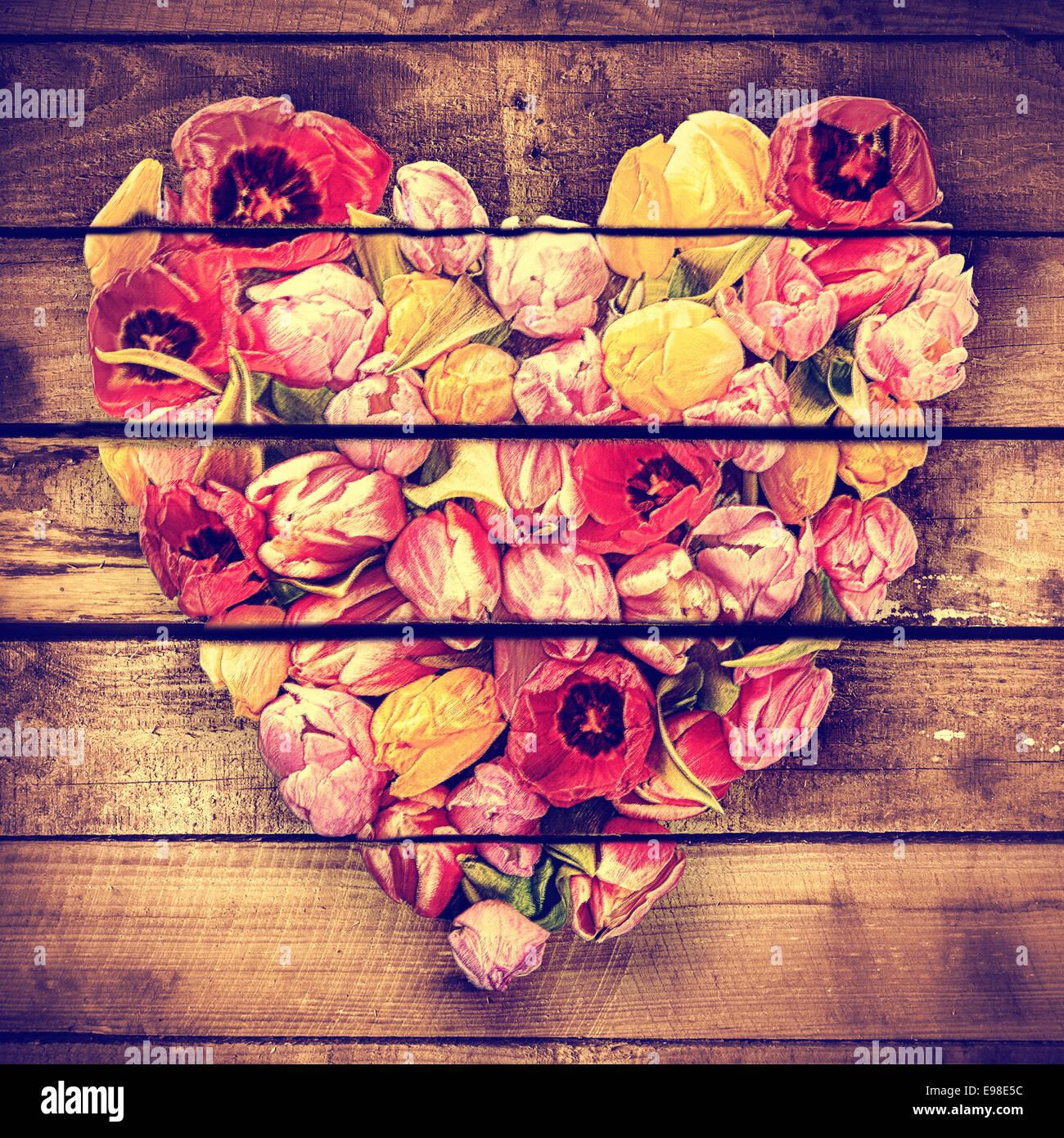 De coeur vintage artistique formé de tulipes au printemps colorés sur panneaux en bois rustique pour un cadeau unique Banque D'Images