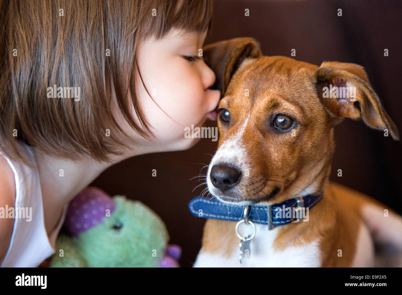 Toddler girl kissing her puppy dog Photo Stock