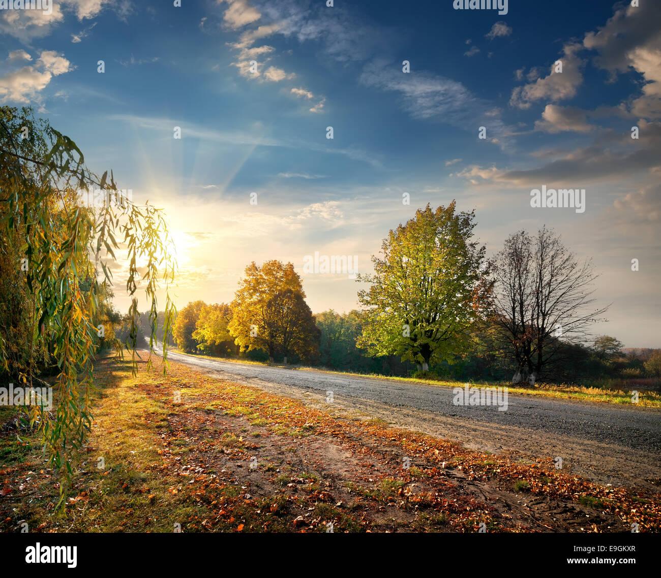 L'autoroute à travers la belle forêt d'automne et un soleil éclatant Photo Stock