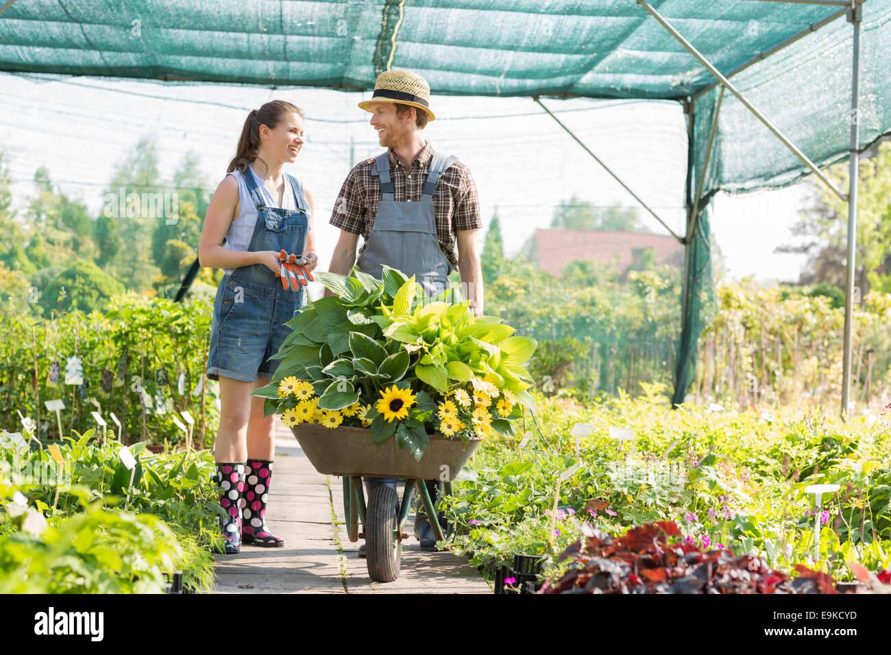 Jardiniers discuter tout en poussant les plantes de serre à brouette Banque D'Images