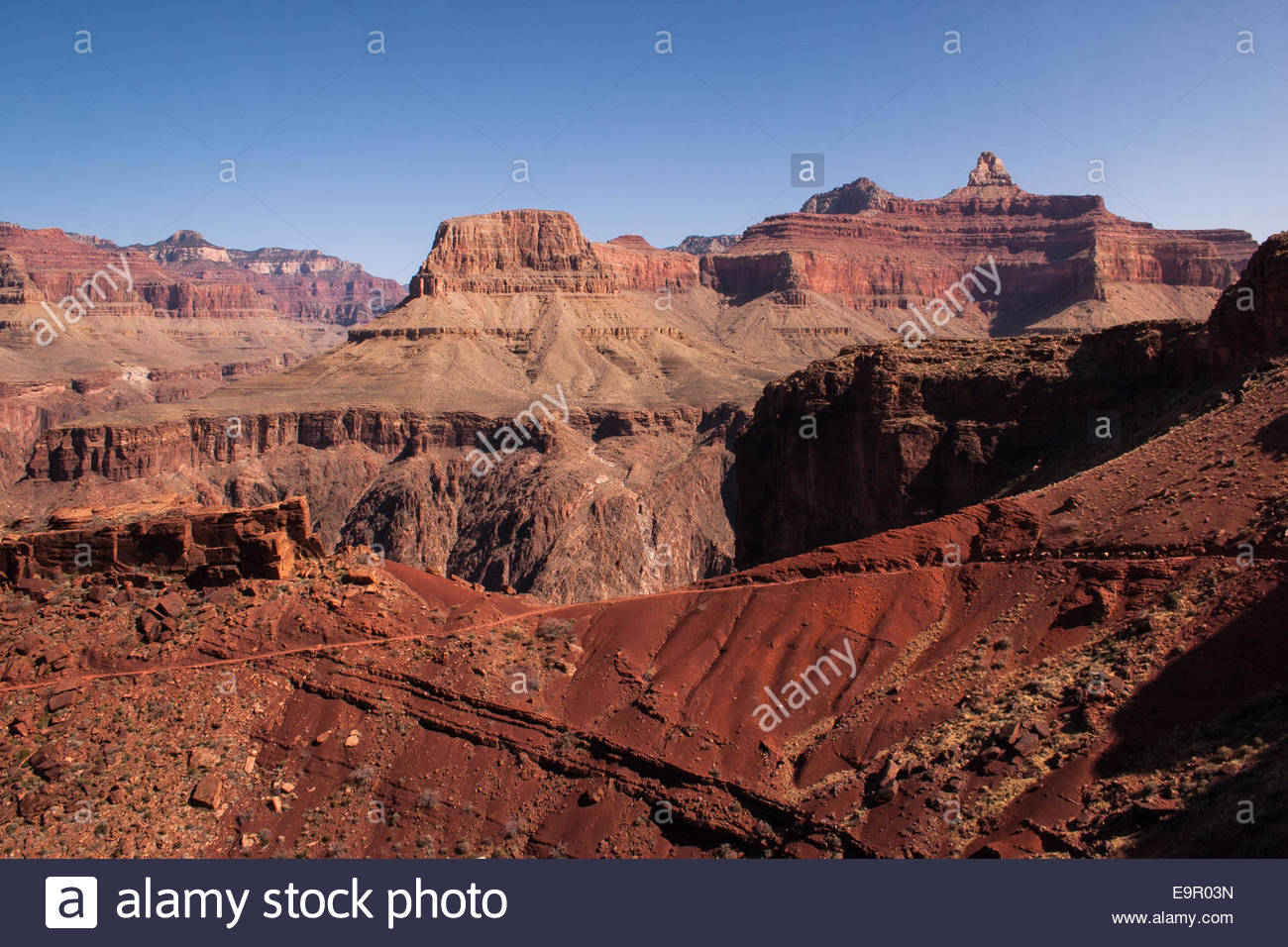Falaises du Grand Canyon Photo Stock