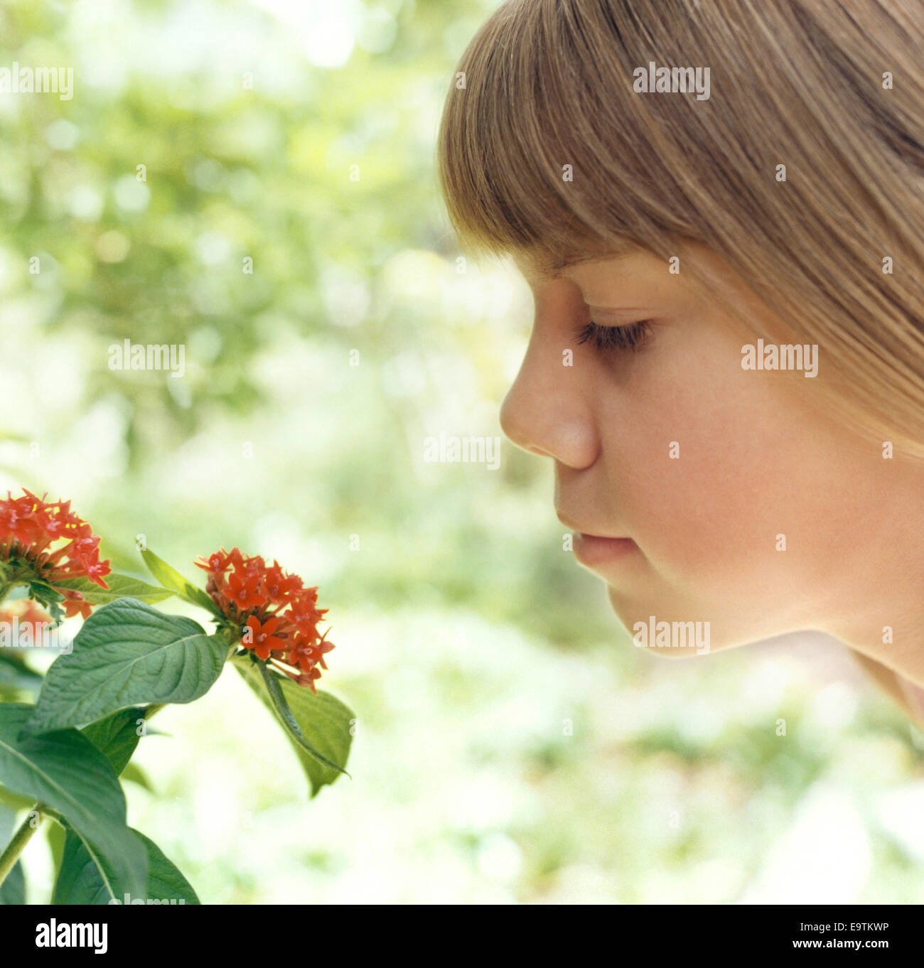 Girl Smelling Flower Photo Stock