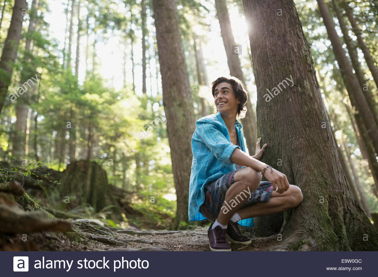 Woman crouching by tree in woods Photo Stock