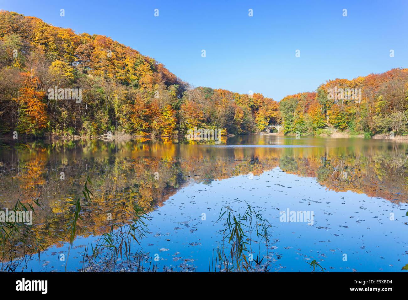 Paysage d'automne avec reflet dans un lac. Photo Stock