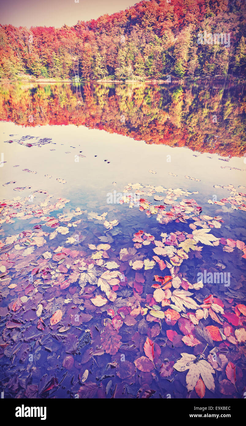 Paysage d'automne filtrée vintage avec reflet dans un lac. Photo Stock