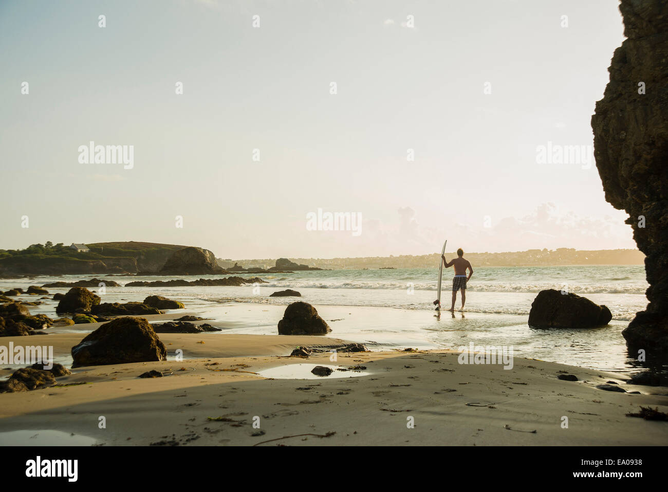 Veterinarian at waters edge holding surf board Photo Stock