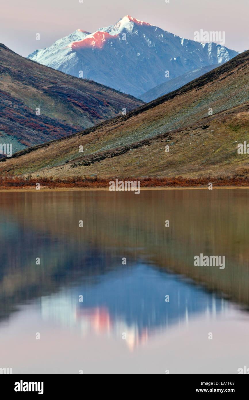 Alpenglow allume le sommet de la montagne reflète dans une toundra alpine lake dans l'Alaska Range, monts Photo Stock