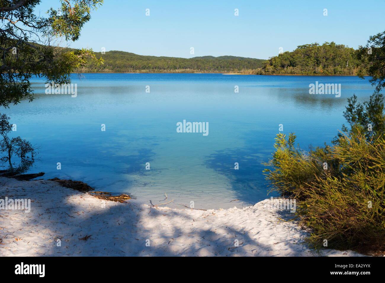 Le Lac McKenzie, Fraser Island, UNESCO World Heritage Site, Queensland, Australie, Pacifique Photo Stock