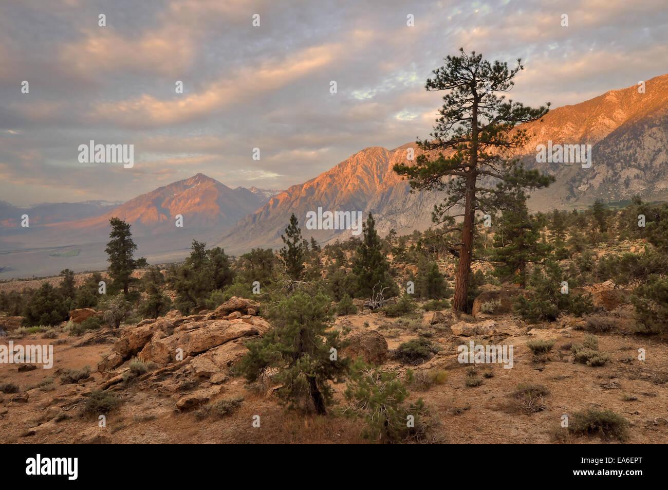 États-unis, Californie, Sunrise de Wheeler Ridge et Mt Tom Photo Stock