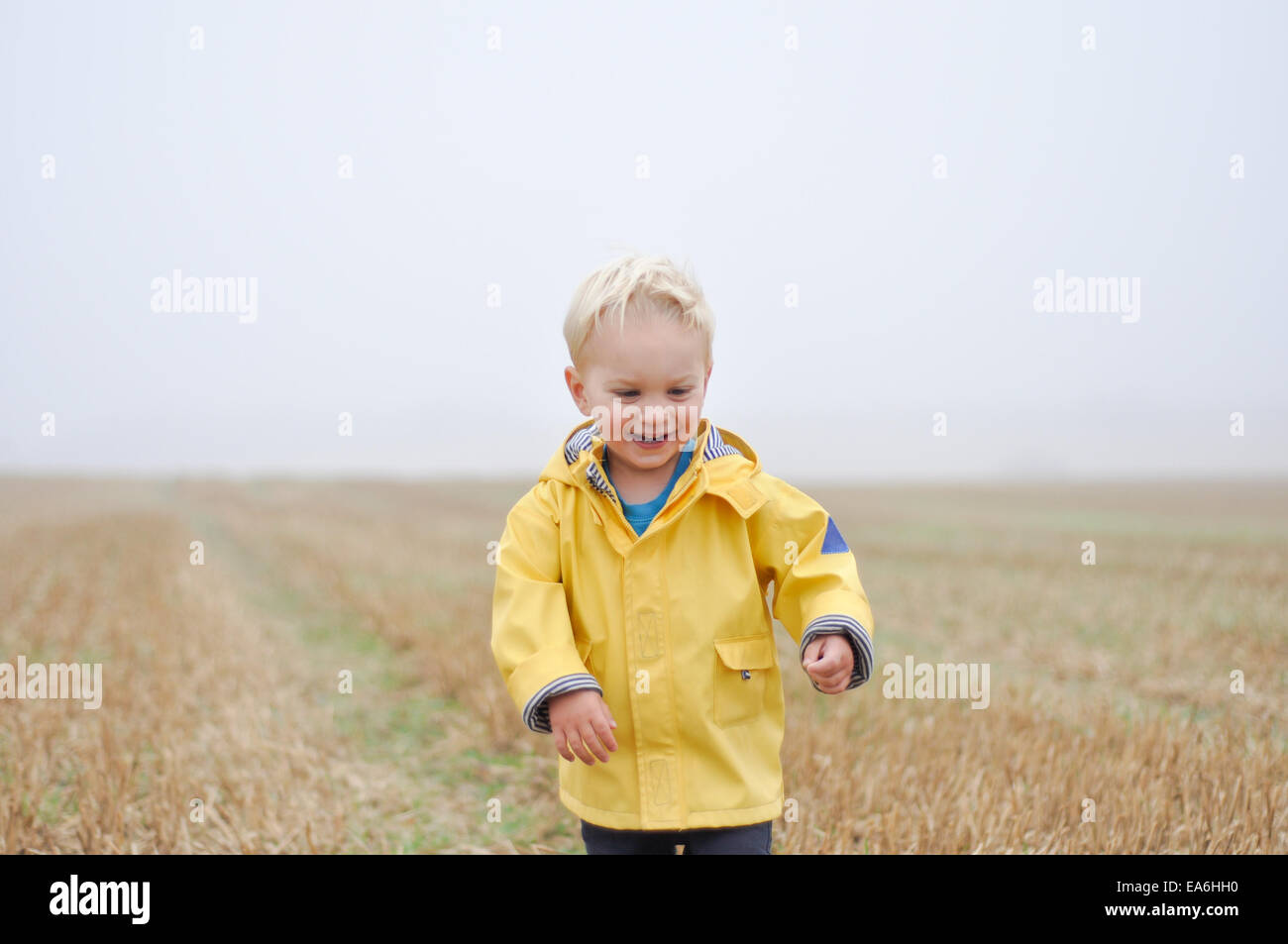 Garçon dans un manteau de pluie debout dans un champ de blé, England, UK Photo Stock
