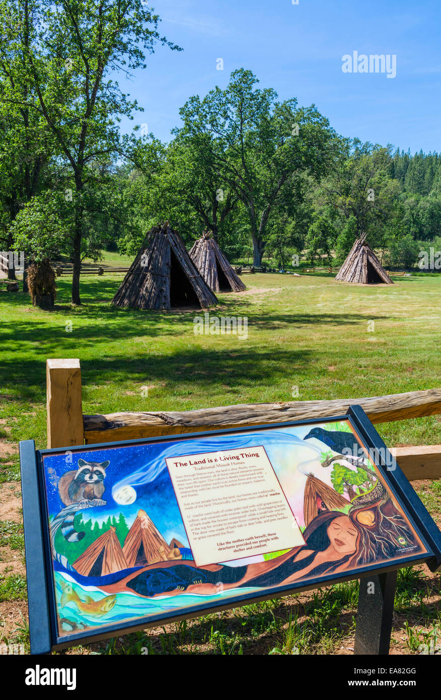 Maisons traditionnelles écorce Miwok (U) Macha à Affaires indiennes le meulage Rock State Historic Park, Amador Banque D'Images
