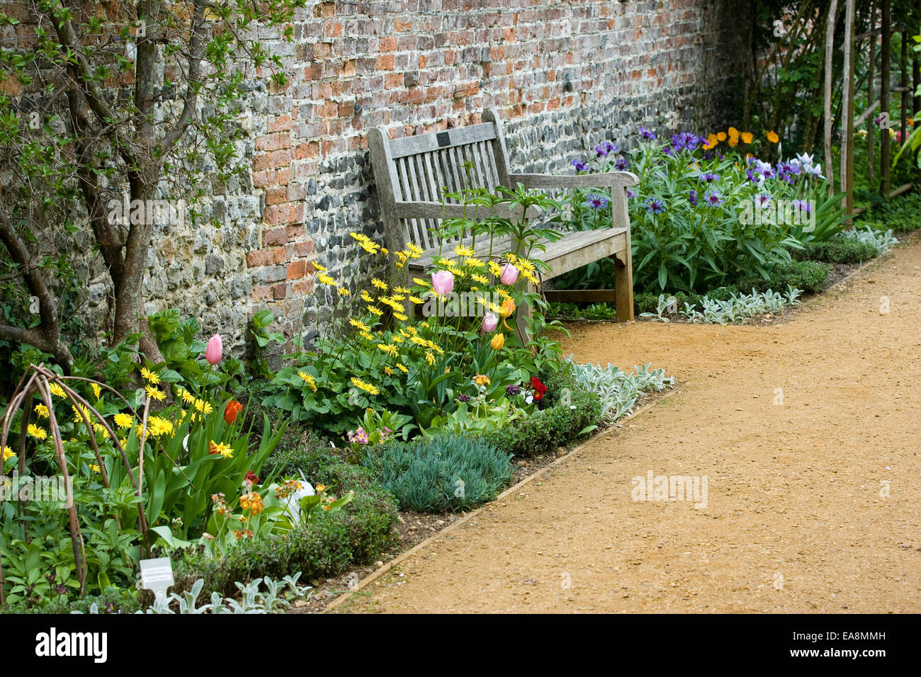 Jardin clos de printemps avec un banc, mur de briques et une variété ...