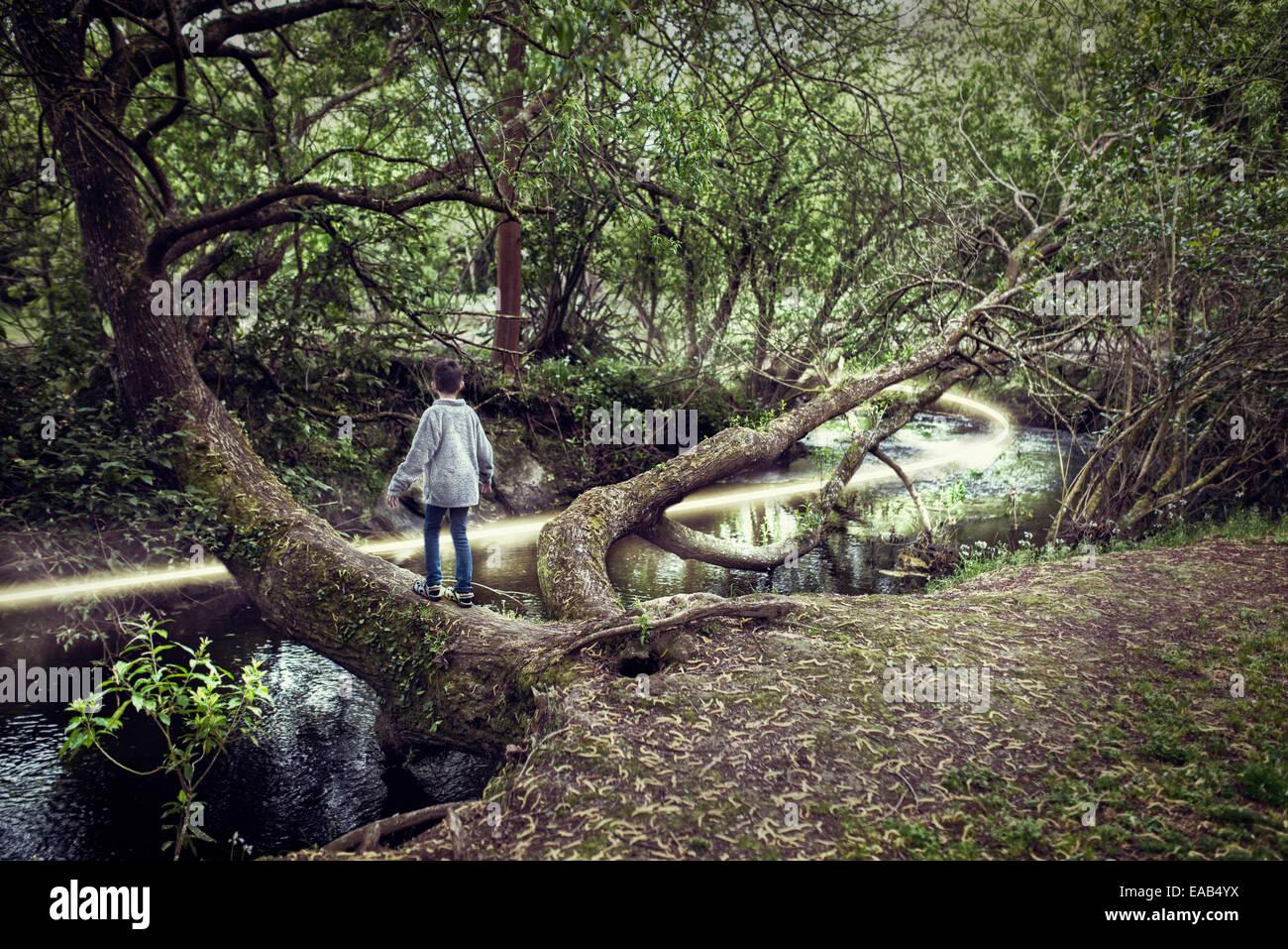 Garçon sur arbre de plus de rivière avec chemin de lumière Photo Stock