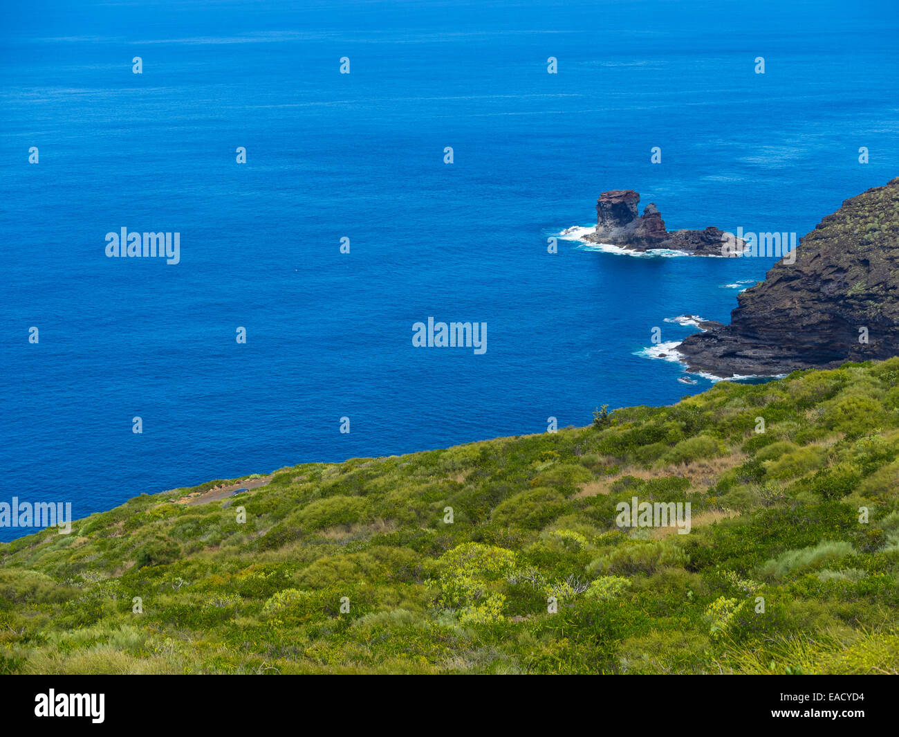 Les falaises, près de Garafia, Punta del Puerto Viejo, La Palma, Canary Islands, Spain Photo Stock