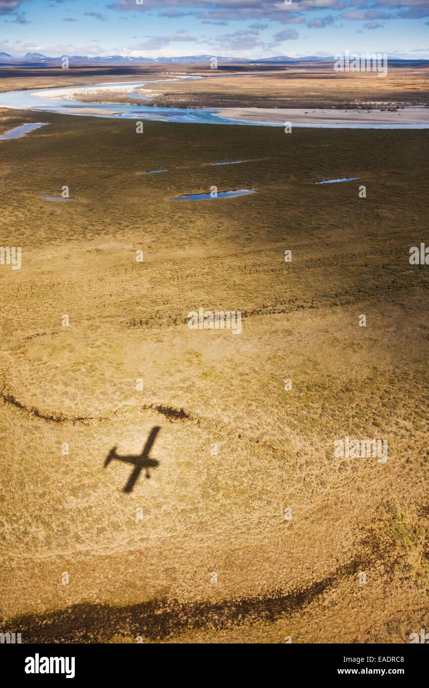 L'ombre d'un de Havilland Beaver Falls en avion de brousse dans la toundra arctique, préserver Noatak, Photo Stock