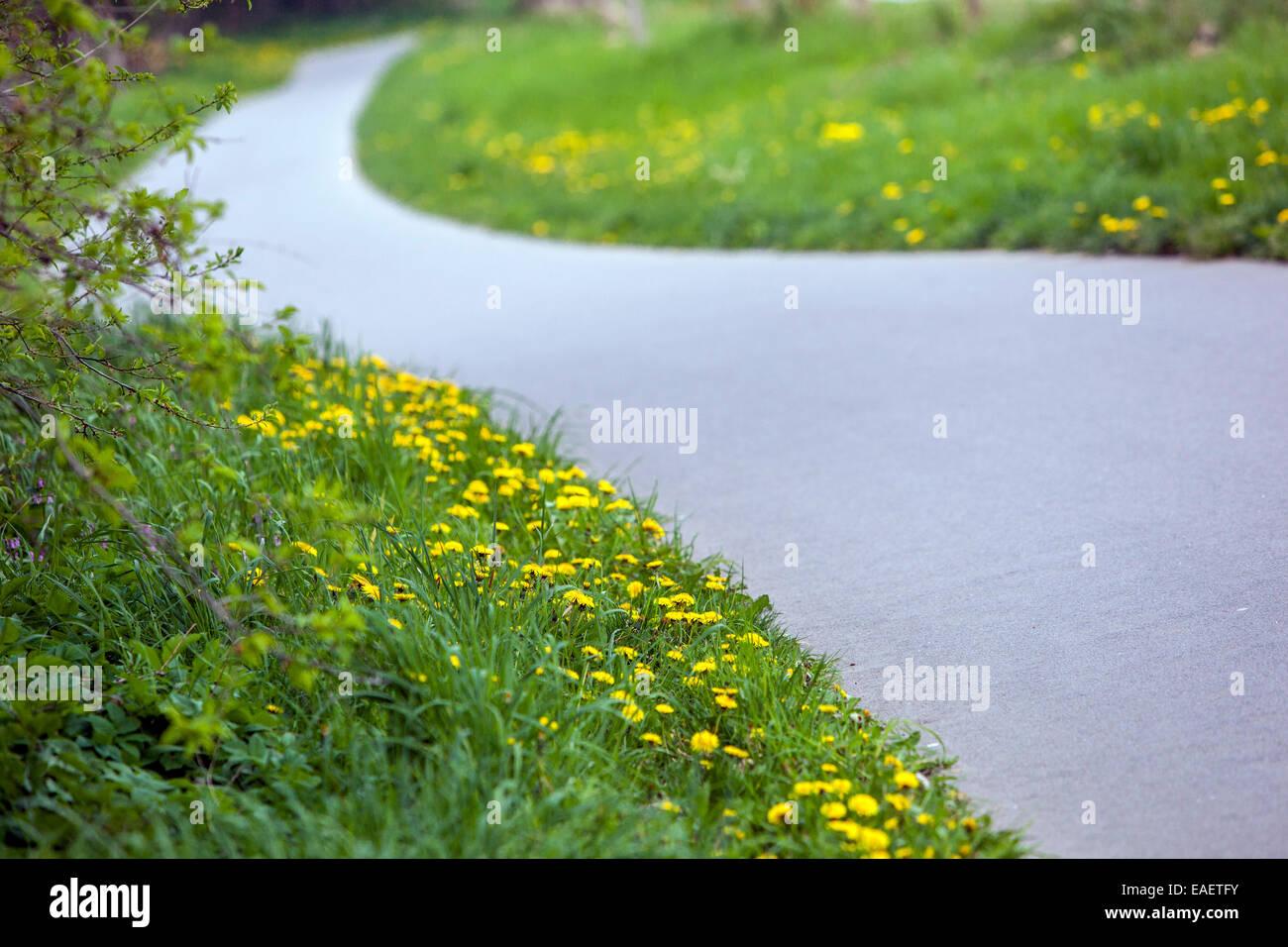 La route asphaltée paysage rural Photo Stock