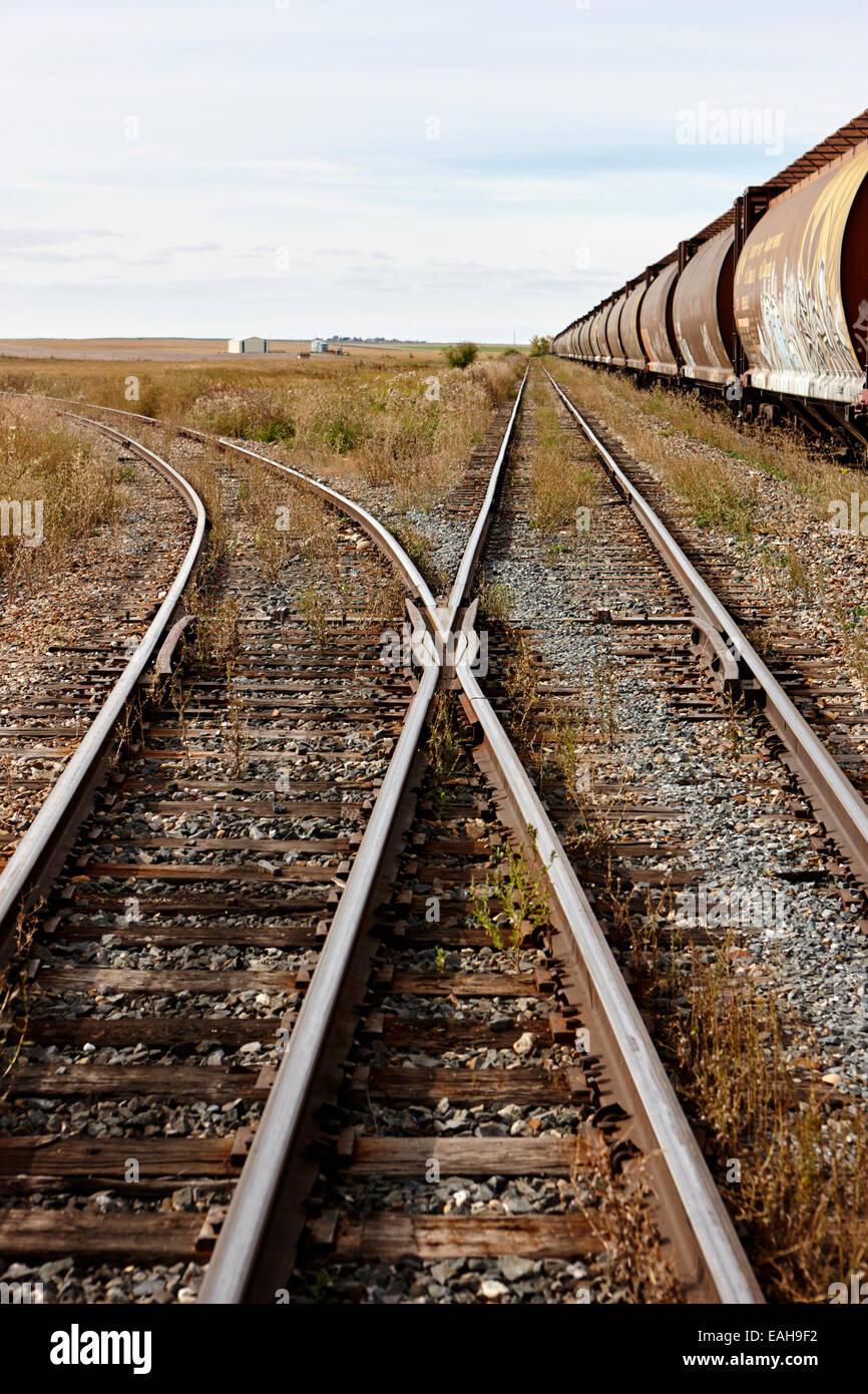 Camions de grain de fret sur l'ancien chemin de fer du Canadien Pacifique maintenant Great Sandhills railway Photo Stock