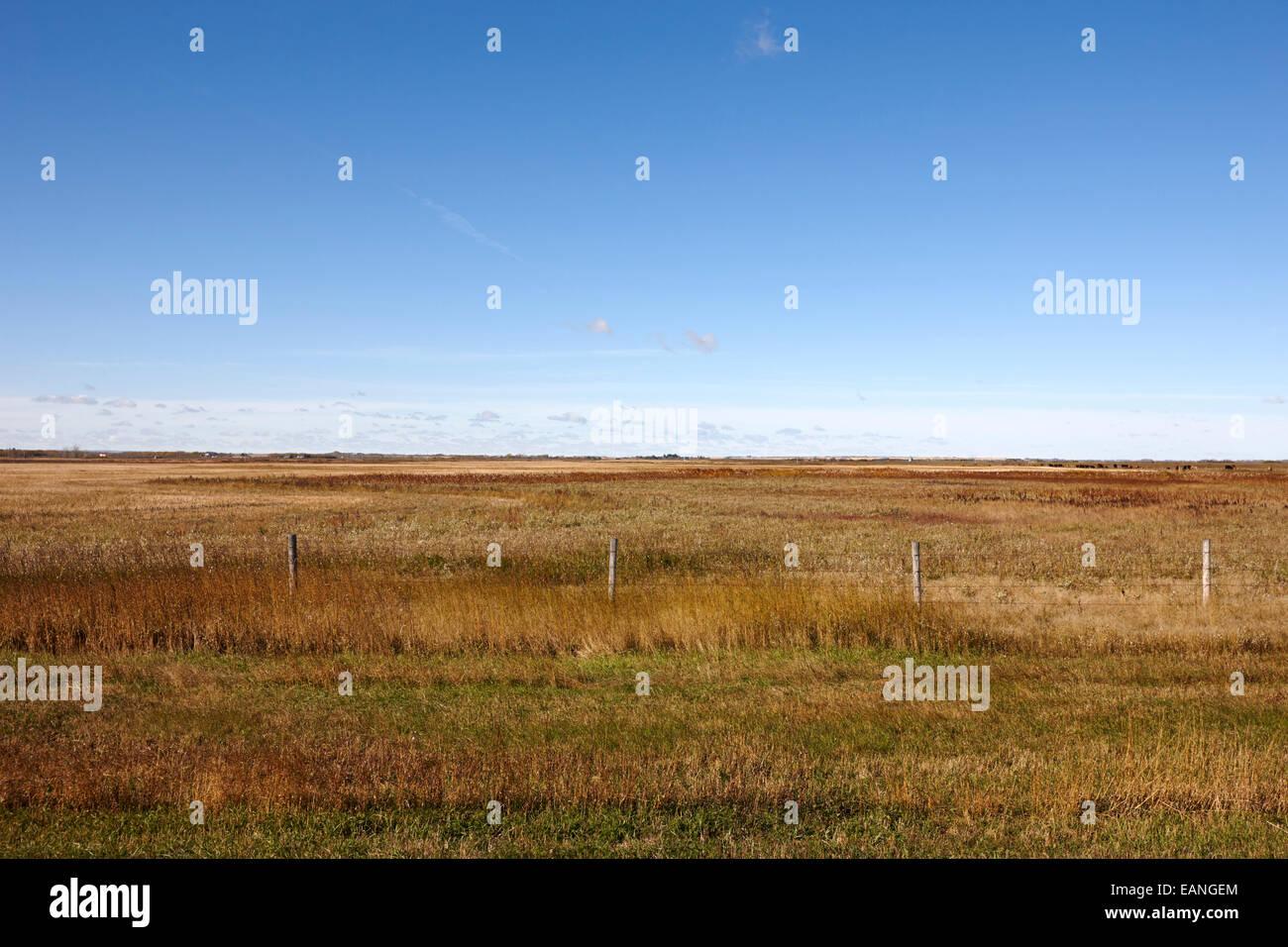 Les prairies et les terres agricoles en Saskatchewan Canada Photo Stock