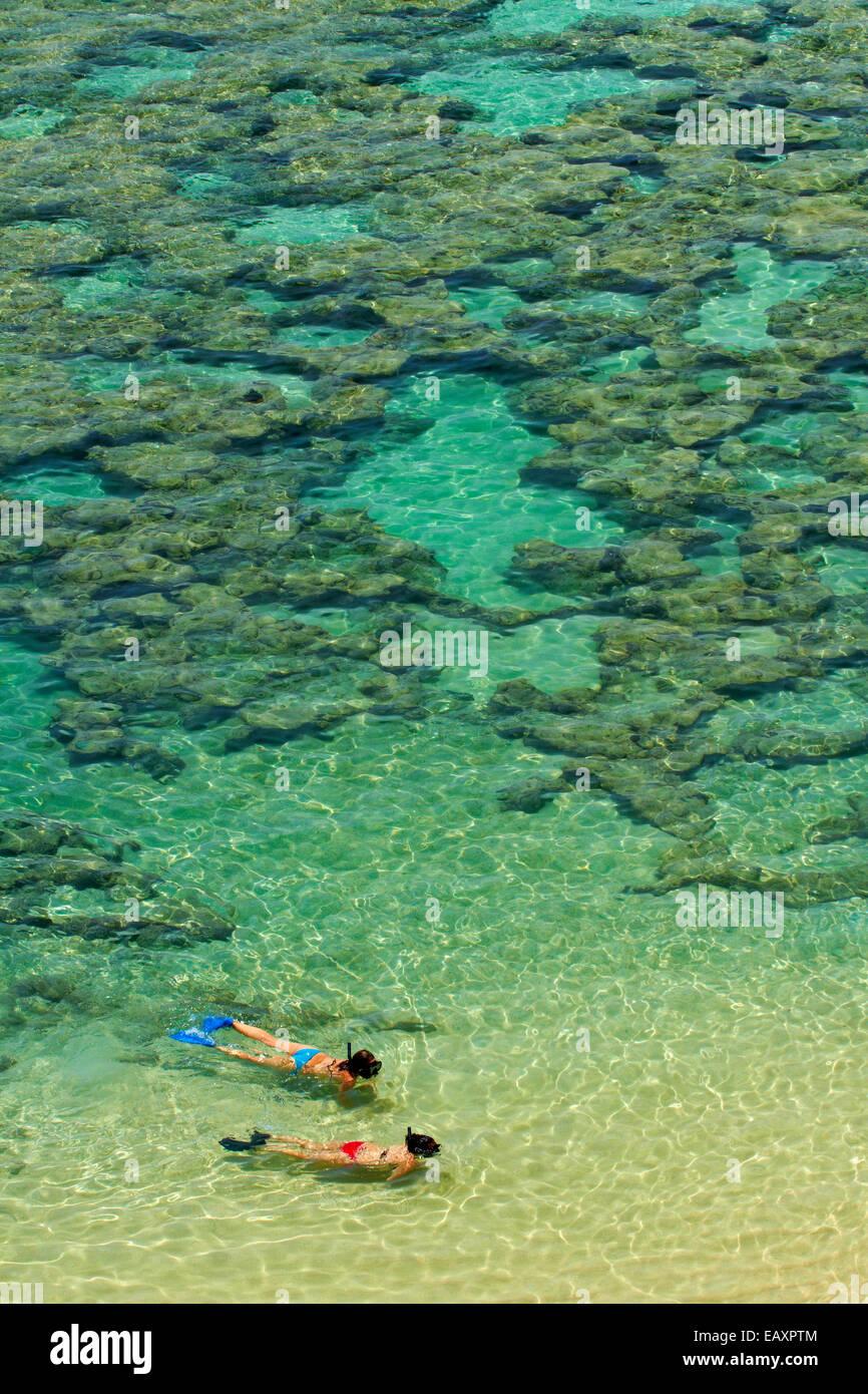 Les gens de la plongée avec tuba parmi les récifs coralliens à Hanauma Bay Nature Preserve, Oahu, Photo Stock