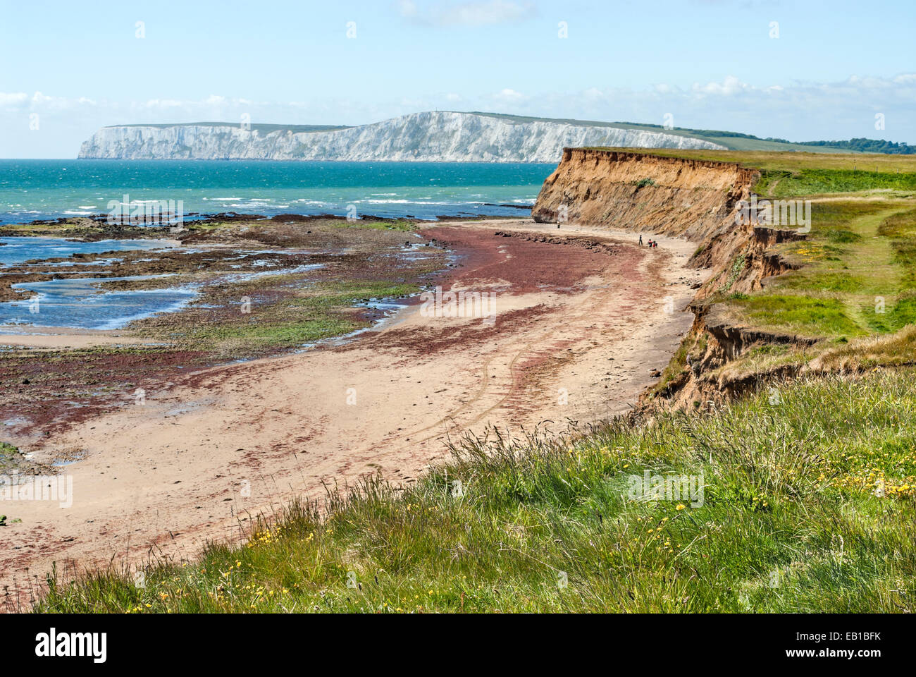 Cote Sud Angleterre côte sud paysage à l'île de wight dans le sud de l'angleterre banque