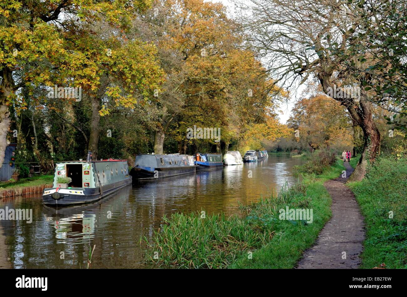 La navigation de la rivière Wey Ripley à Surrey Photo Stock
