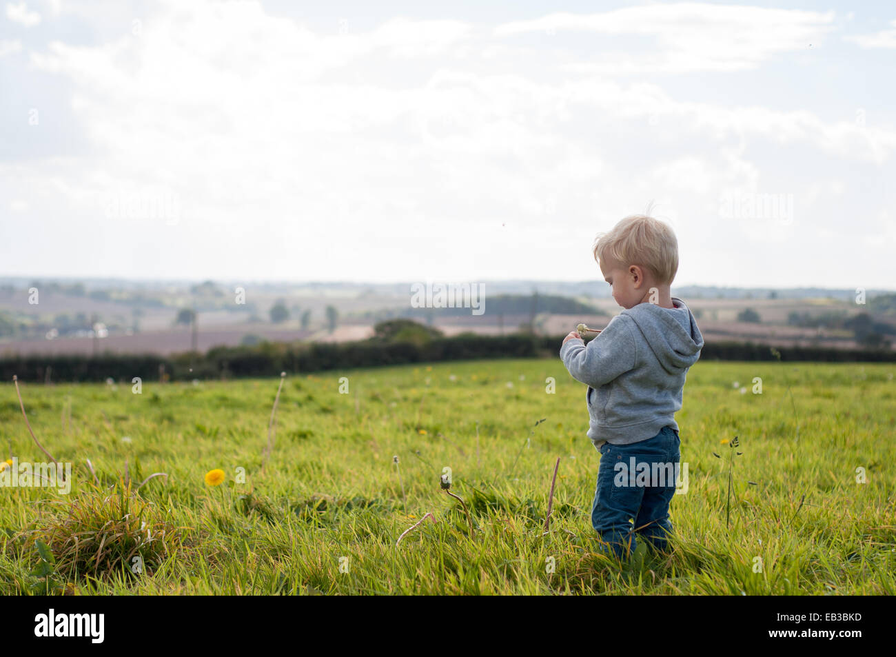 Boy standing in a field Photo Stock