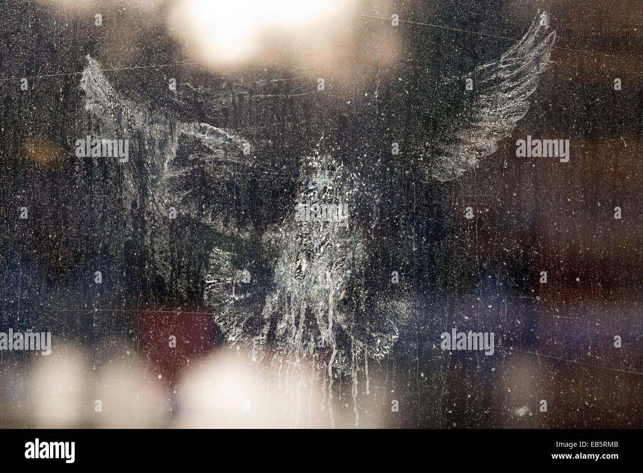 Pigeon ramier Impression sur une fenêtre; UK Photo Stock