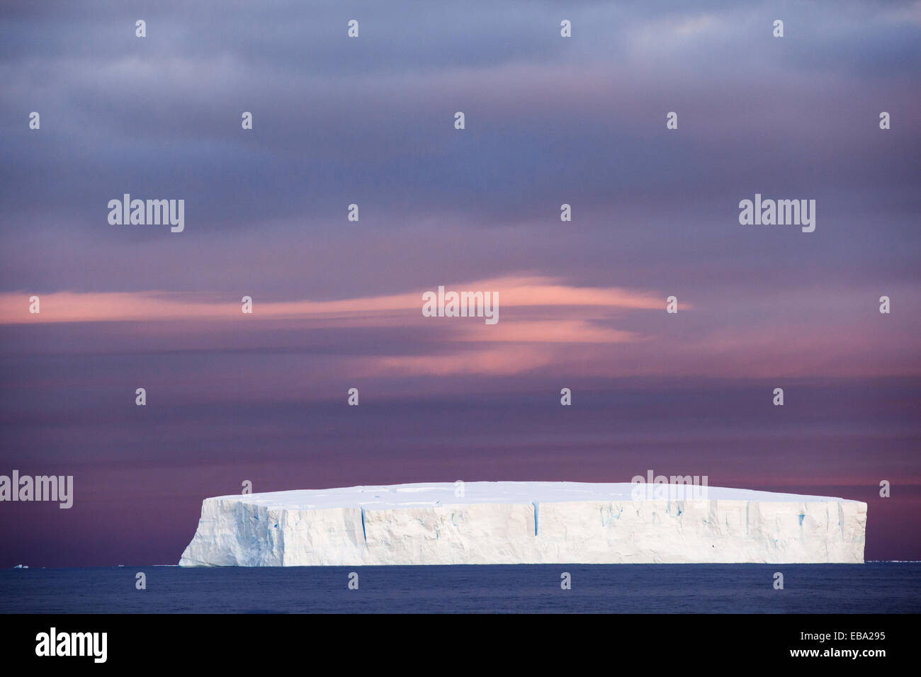 Iceberg, Péninsule Antarctique, l'Antarctique Photo Stock